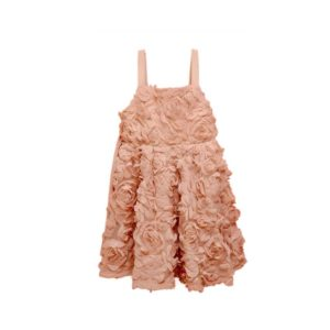 Rola Rola Children French Chiffon Dress